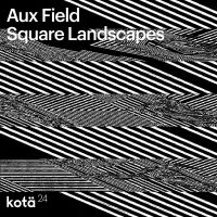Aux Field - Square Landscapes (LP)
